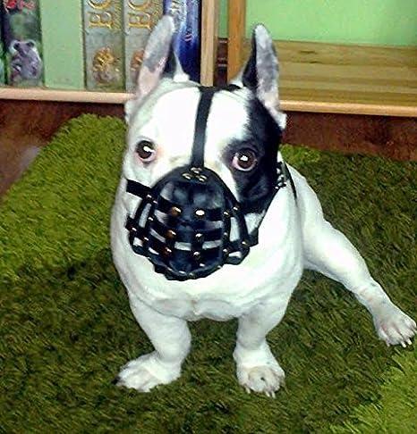 Luz Bozal para perro de piel para Bulldog francés