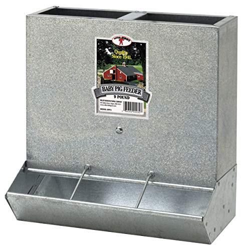 (3 HOLE GALVANIZED 9 POUND CREEP STYLE FEEDER BABY PIG PIGLET GOAT LAMB KID BPF3)