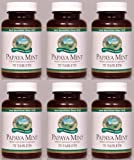Naturessunshine Papaya Mint Digestive System Support Herbal Combination Supplement 70 Chewable Tabs (Pack of 6)