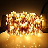 ER CHEN 30m 300-LED Warm White Copper Wire String Fairy Light Lamp Decoration Lighting with 12V AC Adapter for Christmas Party Wedding(99ft )