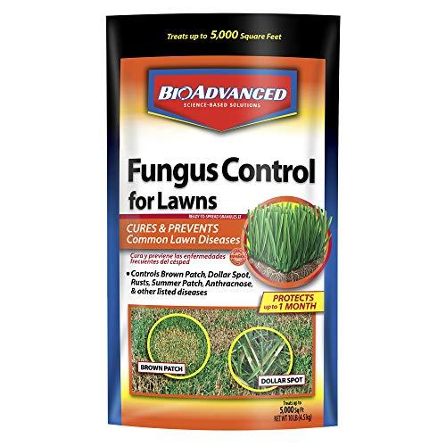 BioAdvanced 701230A Fungus Control