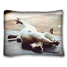 """Custom ( Animals cat stretchs floor lie down paw ) DIY Pillow Cover Size 20""""X26"""" suitable for King-bed PC-Bluish-47868"""