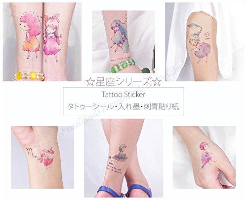 Extraíble Cuerpo Arte Tatuajes Temporales Pegatinas – Aries signo ...