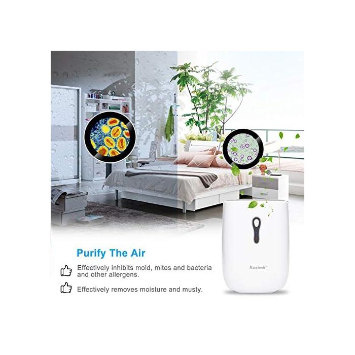 51GuIDOP1YL Ultra-eficiente: Área aplicable 5-20m2. La eficiencia de deshumidificación de 300 ml / día (30 ° C, 80% de HR) es mejor que el deshumidificador del mismo nivel. Inhibe eficazmente el moho, los ácaros y las bacterias y otros alérgenos, también puede eliminar la humedad y el moho, creando un ambiente interior agradable y refrescante para usted y su familia Ultra silencioso: la salida de ruido de todos los deshumidificadores termoeléctricos que probamos estaba entre 45-53dB. Kasimir utiliza la tecnología Peltier y opera a menos de 35 dB de ruido. Manténgase alejado de los problemas de ruido! Seguro y fácil: cuando el tanque de agua está lleno, el indicador de la luz roja está encendido y se apaga automáticamente. Cuando duerme, no tiene que preocuparse por el continuo desperdicio de energía y las fugas de agua.