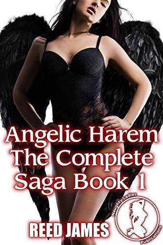 Angelic Harem The Complete Saga Book 1