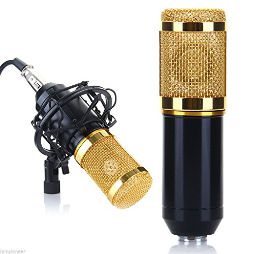 Professional Condenser Microphone, Fashion Round Head Mic with Stand and Windscreen Sponge Sleeve for PC, Laptop,Recording, karaoke,Home Online Live by hongfei