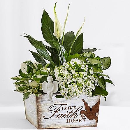 top   funeral plants  delivery  sale