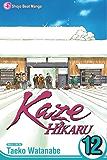 Kaze Hikaru, Vol. 12