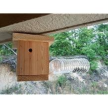 Amazon.com: traps for carpenter bees