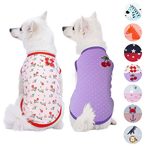 Blueberry Pet Pack of 2 Soft & Comfy Summer Hope Floral Cotton Blend Dog T Shirts Tank Top, Back Length 12
