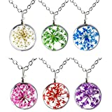 Jovivi Round Surface Dried Pressed Real Flower Transparent Resin Crystal Pendant Necklace, 20.5'' Link Chain