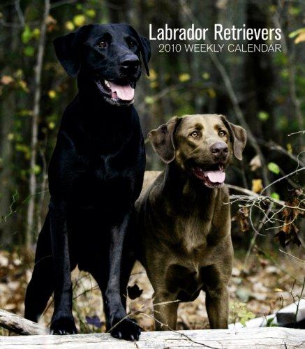 Retriever 2010 Calendar - Labrador Retrievers 2010 Hardcover Weekly Engagement