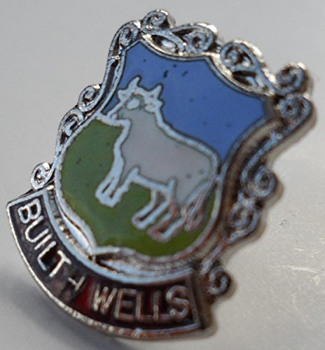 - Builth Wells Wales Pin Badge Welsh With Butterfly Clasp (w0652)