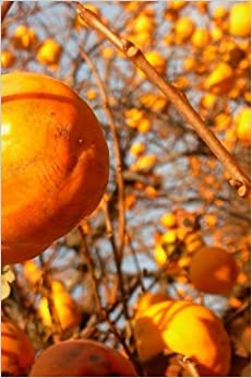 Persimmons Notebook