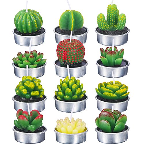 TecUnite 12 Pieces Cactus Tealight Candles Handmade Delicate Succulent Cactus Candles for Party Wedding Spa Home Decoration Gifts (Style B)]()