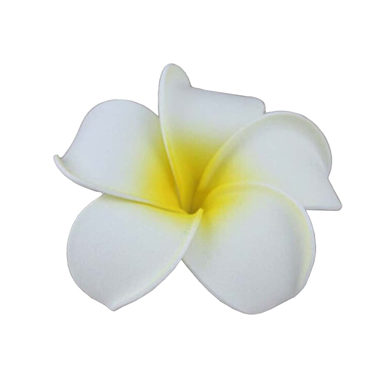 Tonwhar 20 pcs hawaiian plumeria flower foam hair clip accessory for tonwhar 20 pcs hawaiian plumeria flower foam hair clip accessory for beach at amazon womens clothing store izmirmasajfo Choice Image