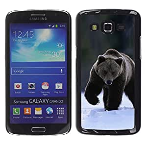 Exotic-Star ( The Winter Grizzly Bear ) Fundas Cover Cubre Hard Case Cover para Samsung Galaxy Grand 2 II / SM-G7102 / SM-G7105