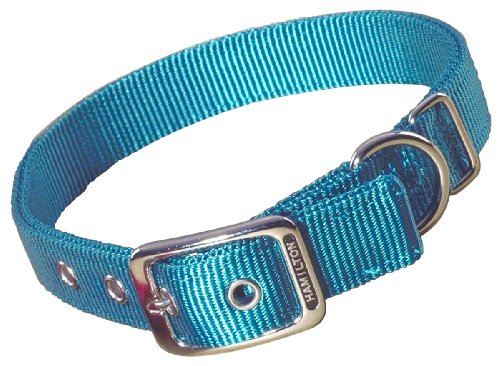 Hamilton Double Thick Nylon Deluxe Dog Collar, 1-Inch by 18-Inch, Teal ()