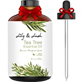 Cleansing Conditioner Herbal Essences Review - Lily & Lush XL Bottle 100% Pure Australian Tea Tree Essential Oil | Undiluted, Therapeutic Grade | The Superior Choice for All Natural Acne Relief or to Purify, Cleanse & Renew I 4 fl oz w/Dropper