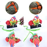 Beauty Parrot Adjustable Bird Harness and Leash