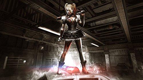 Twenty-threeArkham Knight The Girl The Villain Quinn 24X36 Inch Poster Print -