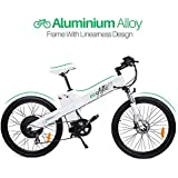 """26"""" Electric Bike 2018 Update 1000W 48V/13AH Electric Mountain Bicycle with Shimano 7 Speeds LED Display Lithium Battery"""