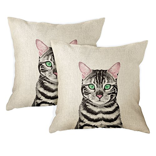 Silver Spotted Cats - FINCIBO Sofa Pillow Cases, Decorative Throw Pillow Cushion Covers for Home Office 18 x 18 Inch (2 Piece Set), Cute Spotted Silver Bengal Kitten Cat
