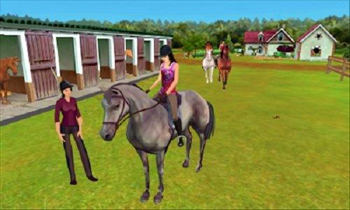 Online Horse Games 3d
