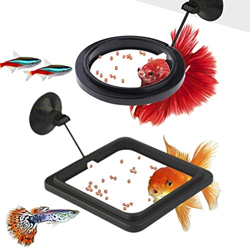 SunGrow Feeding Ring Set for Aquarium, One Square and One Round Floating Plate, Fish Food Stays Inside Frame, Easy…