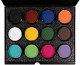Mehron Makeup- Paradise Makeup AQ ProPalette - 12