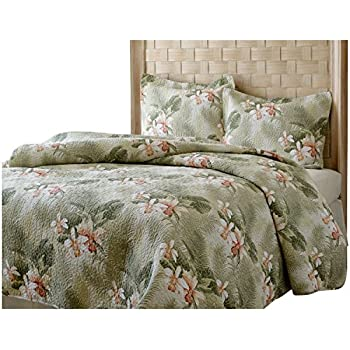Amazon Com Tb 3 Piece Queen Tropical Themed Quilt Set