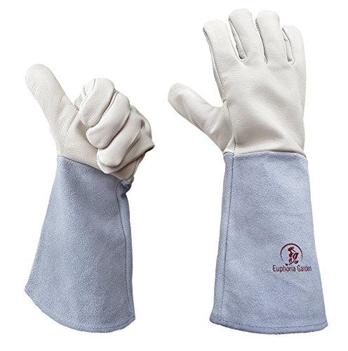 Rose Gardening Gloves Euphoria Blackberries product image