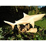Wooden Shark Carving - Hand Carved Great White Shark on Parasite Wood - 30cm by Thai Gifts