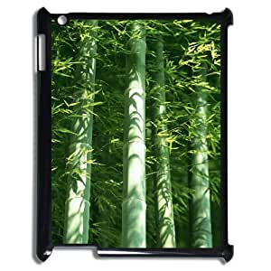 LZHCASE Diy Cover Custom Case Bamboo For IPad 2,3,4 [Pattern-1]