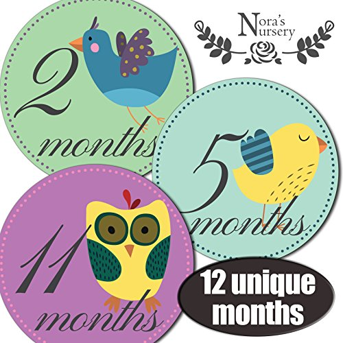 Vintage Birds Baby Monthly Stickers
