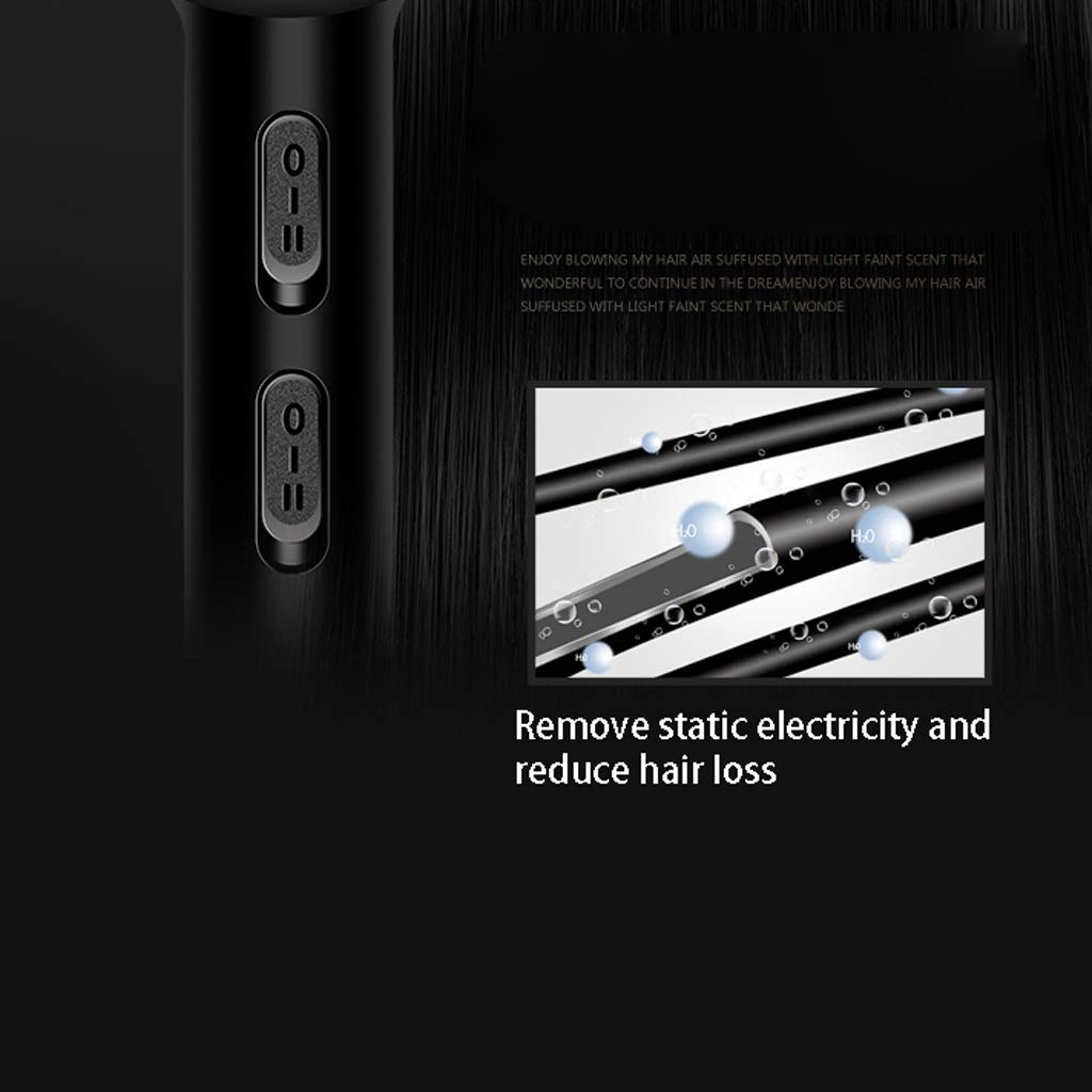 2000W Negative Ion Hair Dryer color : Blue Professional Hair Salon Hair Dryer No Damage//Mute//High Power
