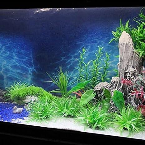 15 m longitud Acuario Océano papel pintado pintura fondo pecera imagen de fondo: Amazon.es: Productos para mascotas
