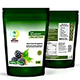Mulberry Powder - Mulberry Leaf Extract - All Natural - 1 Lb