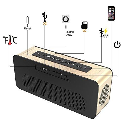 Soundance Electric Digital LED Alarm Clock Wireless FM Radio Portable Speaker with USB Built-in Microphone for Bedroom Bedside Office Desk PC Laptop Desktop Computer, A10 Gold