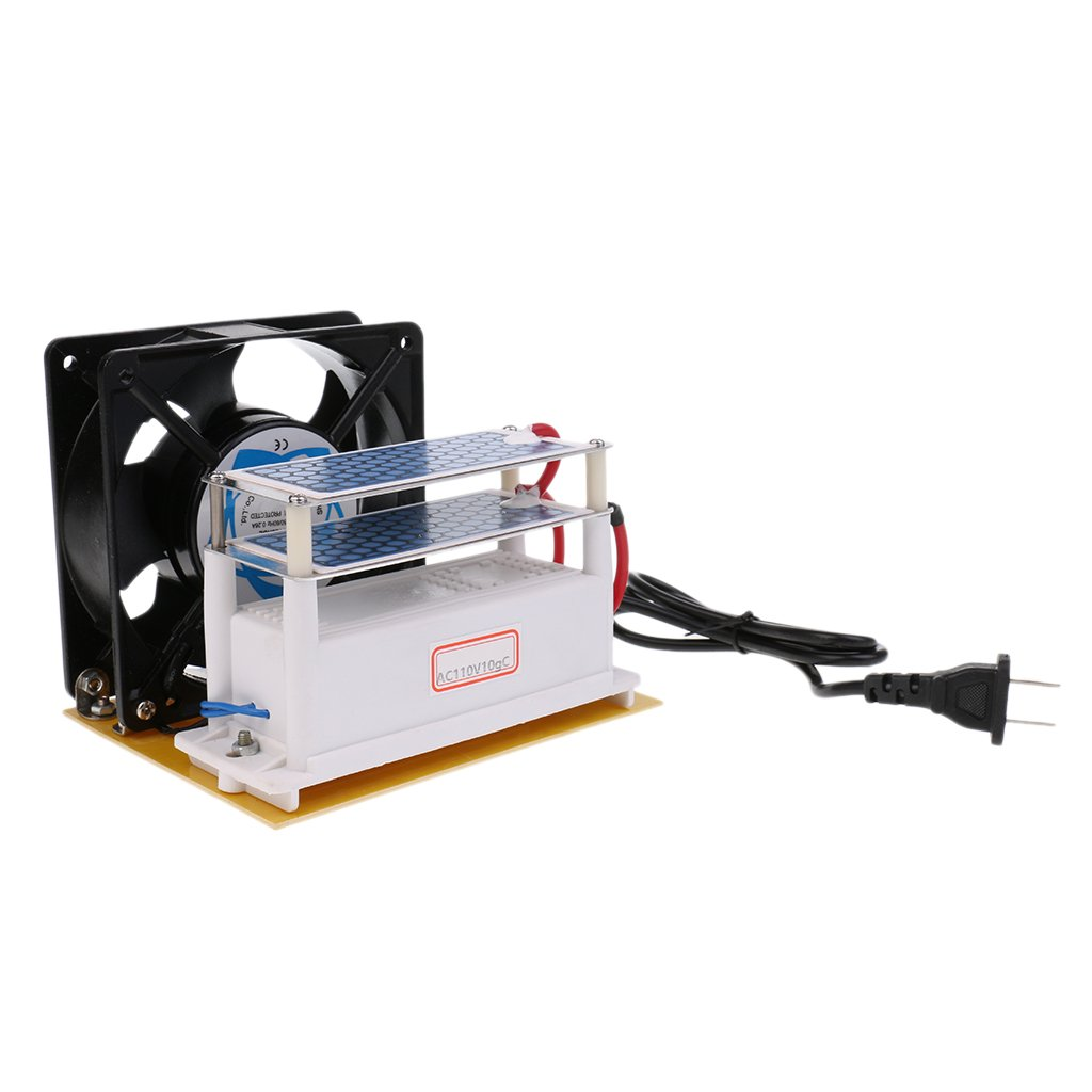 MonkeyJack Ozone Generator 110v 10g/h with Double Sheet Ceramic Plate Long Life Ozonizer Sterilizer Fan Excellent Heat Dissipation