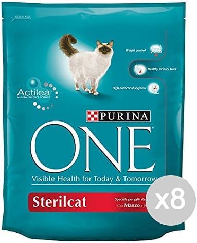 Purina Juego 8 One Gato Croccantini 800 Manzo sterilcat Comida para Gatos: Amazon.es: Productos para mascotas