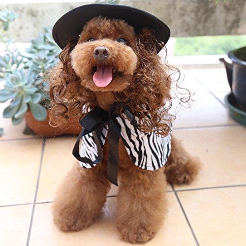 Witch Wig Stripes (Enerhu Pet Costumes Hat Wig Cloak Cape Set Cat Dog Clothes Puppy Clothing Zebra-stripe Asian L)