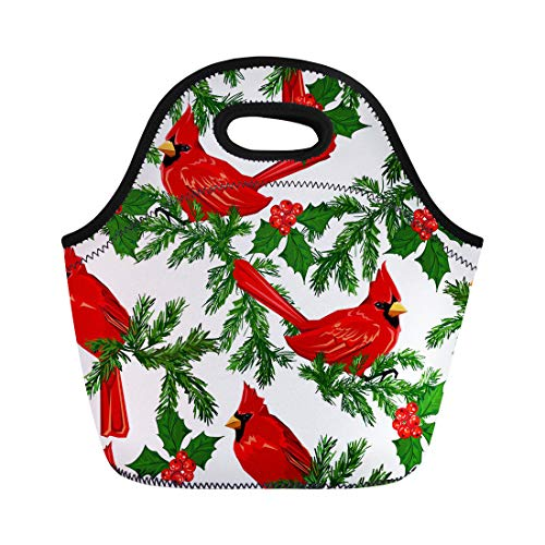 Semtomn Neoprene Lunch Tote Bag Colorful Pattern Red Cardinal Bird Animal Beak Beautiful Birdwatching Reusable Cooler Bags Insulated Thermal Picnic Handbag for Travel,School,Outdoors,Work