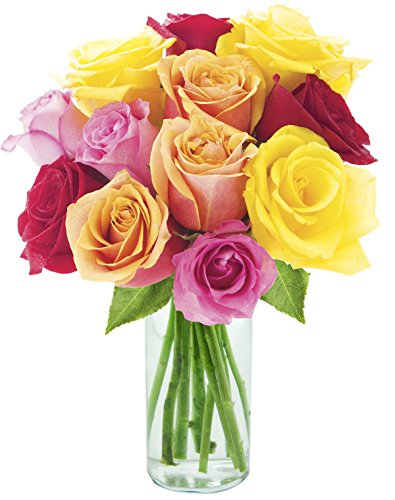 Assorted Rose Bouquet of 12 Red, Pink, Orange and Yellow Roses (Farm-Fresh, Long-Stem) with Vase (Assorted Roses Long Stem)