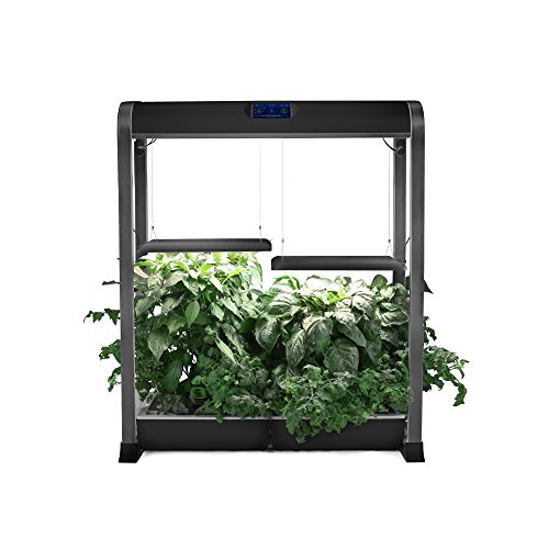 AeroGarden Farm XL - Black (36