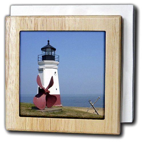 Vermilion Wood Lighthouse (3dRose nh_61711_1 Vermilion Lighthouse Looking Over Lake Erie Wall Art, Natural)