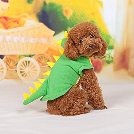 Verde dinosaurio Teddy, Transform forro polar mascota ...