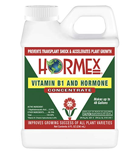 Hormex Vitamin B1 Rooting Hormone Concentrate | Prevents Transplant Shock | Accelerates Growth | Stimulates Roots | For All Plant Varieties & Grow Mediums Including Hydroponics (8 oz)