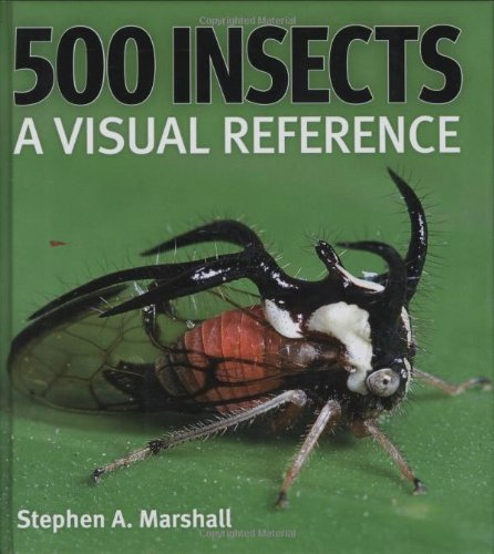 500 Insects: A Visual Reference (Firefly Visual Reference) -