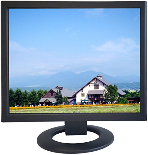 ViewEra V198HB TFT LCD Security Monitor 19